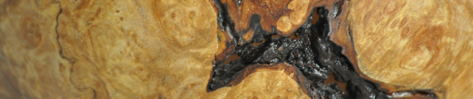 Anatomy of Wood: Bigleaf MapleBurl