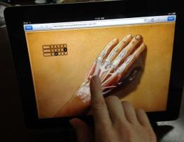 hand_anatomy_app