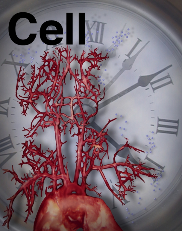 """Cover Art for """"Cell"""" by Laura Maaske - Medimagery LLC"""